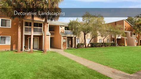 Apartments For Rent Ta Fl Palms At Cedar Trace Apartments For Rent In Ta Fl