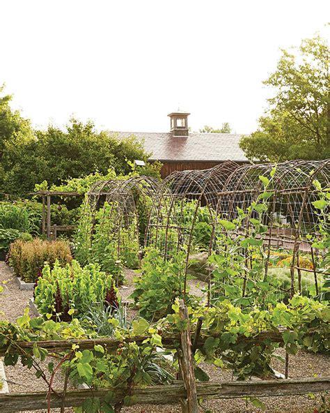 vegetable garden ideas martha stewart