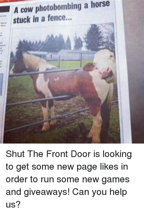 Where Did Shut The Front Door Come From Where Did Shut The Front Door Come From Pr072215 25 Best Memes About Shut The Front Door Shut