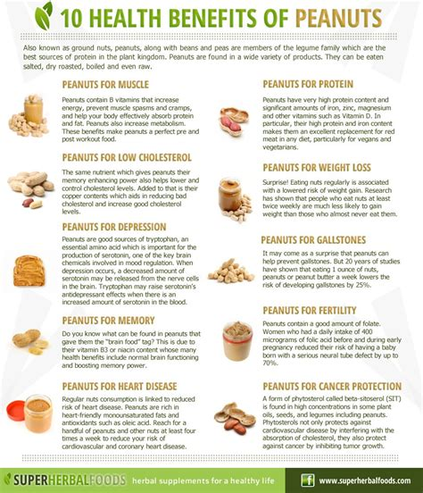 Benefits Of You Should About by Nutty Benefits Why You Should Eat Groundnuts A Million