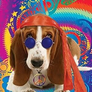 peace basset hound birthday card co uk kitchen home