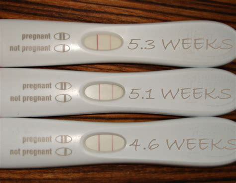 pregnancy test two lines one one light pregnancy test photos becoming parents