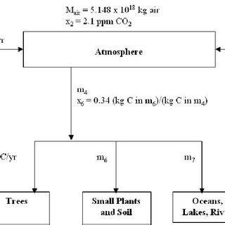 flowchart of carbon cycle flowchart of carbon cycle create a flowchart