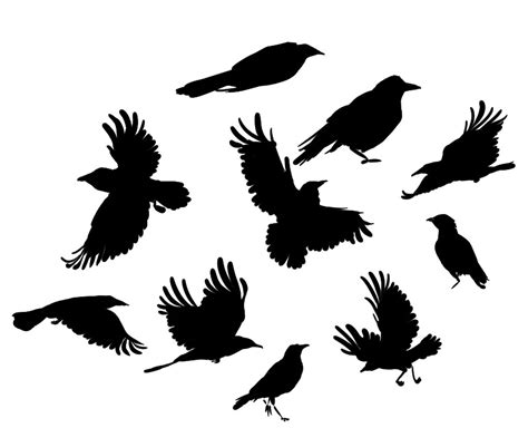 crows stencil clipart best