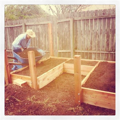 raised bed vegetable gardening for beginners raised bed organic vegetable garden seedlings gardening