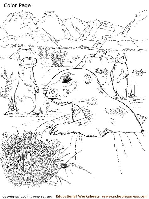 free texas coloring pages sketch coloring page