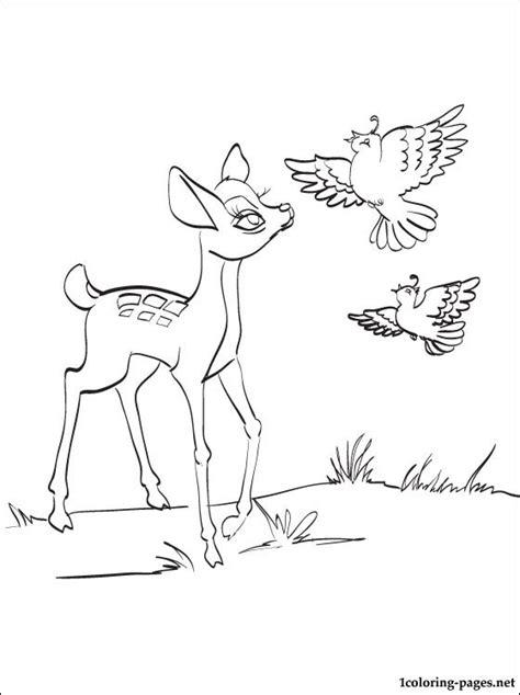 bambi   partridges pencil drawing  coloring