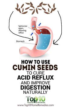 leaky gut heartburn and reflux medication on