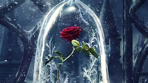 rose in beauty and the beast if it ain t baroque a closer look at disney s live