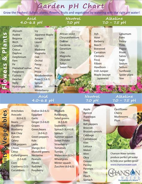 Chart For Ph Of Plants Archives Chanson Water Ph For Vegetable Garden
