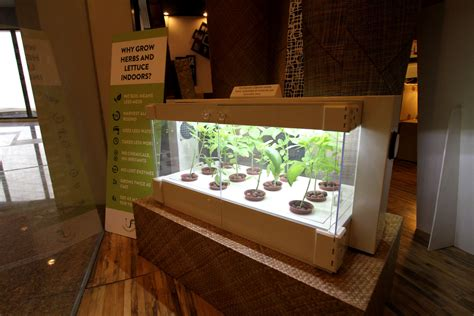 Hydroponic Closet Setup by Grow Your Own Veggies In A Cabinet With No Soil
