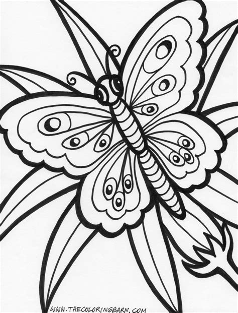 coloring pages of jungle flowers rainforest coloring page coloring pages of rainforest