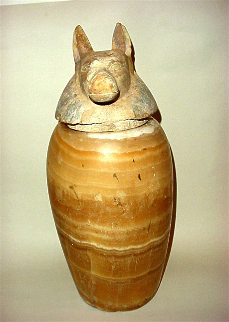 vaso canopo vaso canopo mutina ars antiqua