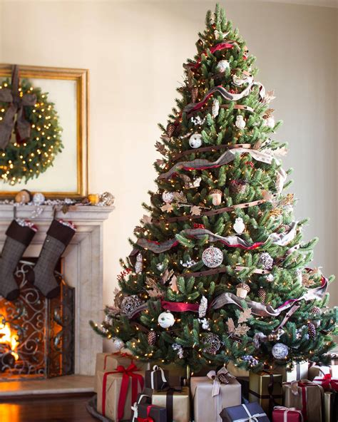 b and q best christmas trees best trees for rooms with high ceilings
