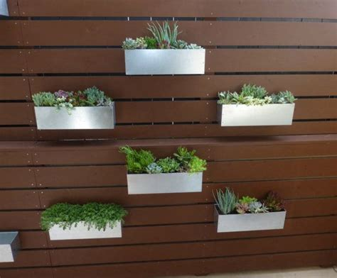 hanging planter box 18 best images about succulent garden on