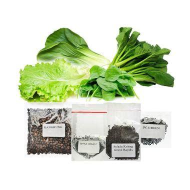 Jual Bibit Kangkung Hidroponik jual jirifarm hidroponik 09354 paket 2 bibit tanaman