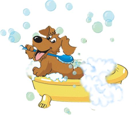 pet bathtub for dogs 5 simple dog bath tips for bathing your dog at home