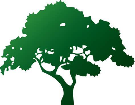 alberi clipart albero png clip arts for web clip arts free png backgrounds