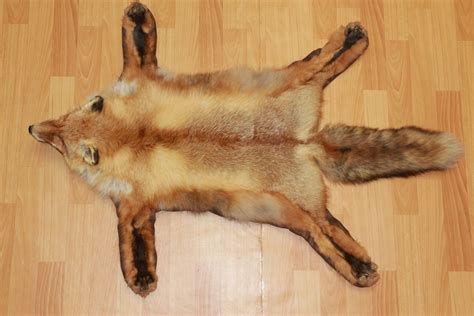 rug taxidermy siberian fox taxidermy rug carpet for sale fur pelt hide skin st3154