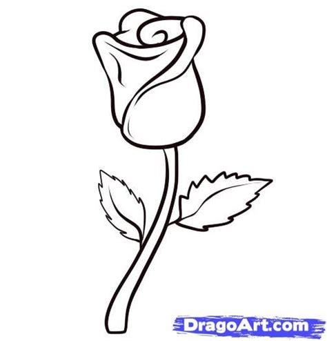 how to draw doodle roses 1000 ideas about easy drawing on drawing