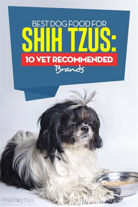 best food for dogs best food for shih tzus 10 vet recommended brands