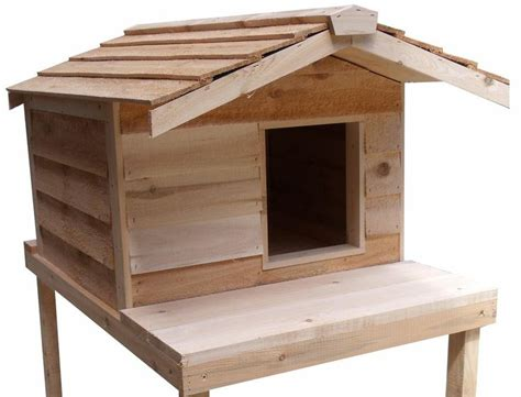 insulated outdoor cat house large insulated cedar outdoor cat house with platform