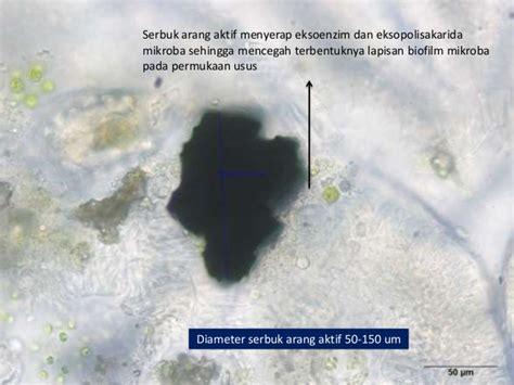 serbuk arang aktif sebagai suplemen pakan untuk ikan nila