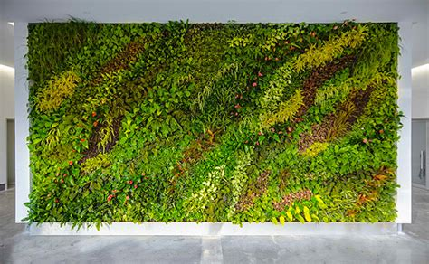 How To Interior Decorate Your Own Home by Decorate Your Walls With Live Plants Themodernsybarite