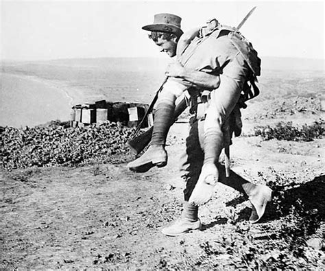 anzac cove to afghanistan the history of the 3rd brigade books 291 best images about anzacs on lest we forget