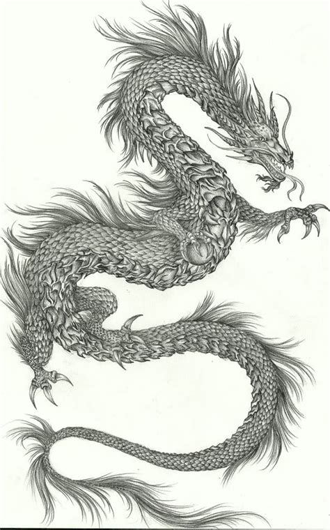 naga dragon tattoo 17 best images about dragon naga on pinterest dragon art