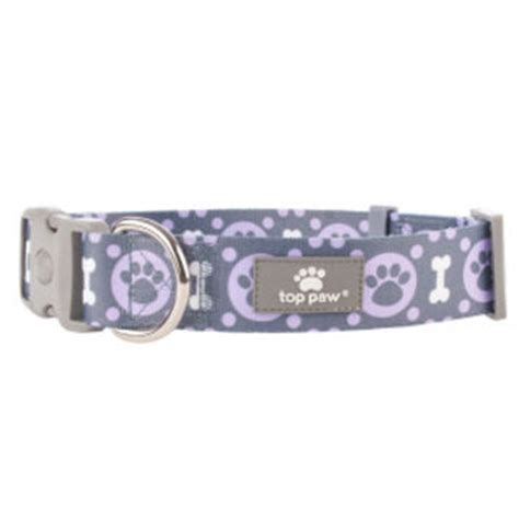 e collar for dogs petsmart best petsmart collars products on wanelo