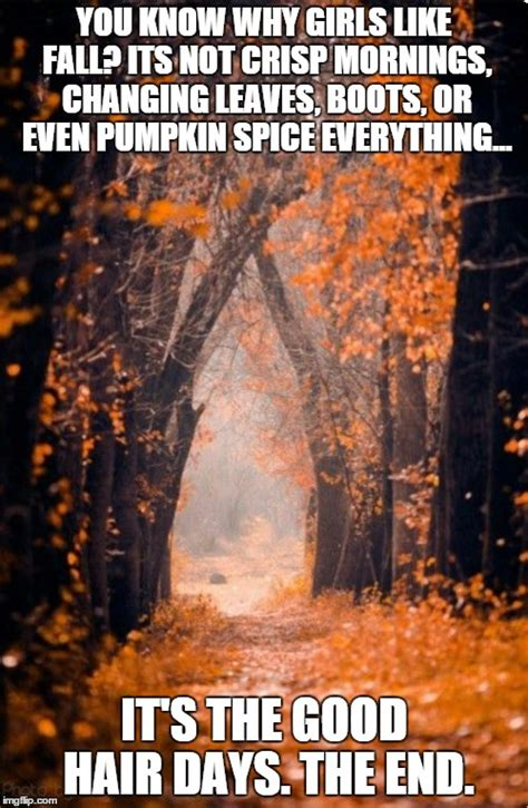 Fall Memes - autumn meme related keywords suggestions autumn meme