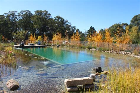 Natural Pool by Natural Pool Australia Natural Pools Nz