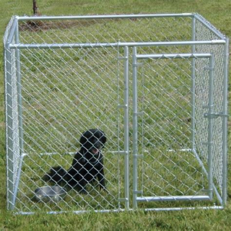 chain link kennel new 5 x 5 x 4 high chain link kennel enclosure pen metal steel fence ebay