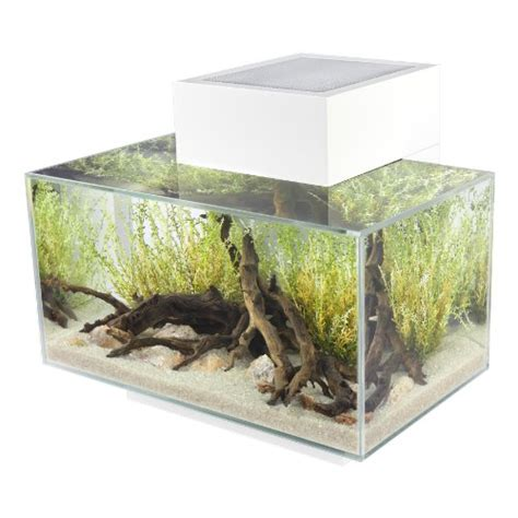 aquarium design centre ebay the ultimate guide to modern contemporary fish tanks with