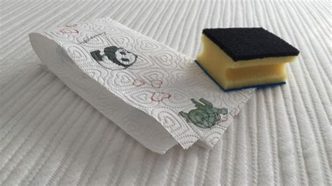 matratze reinigen matratze erbrochenem reinigen frag mutti