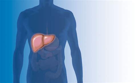 nierenschmerzen beim liegen r 252 ckenschmerzen im unteren r 252 cken warum die ursache vorne