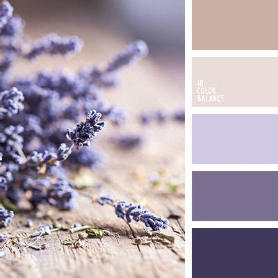 colors that go with lavender what colors go with lavender steval decorations
