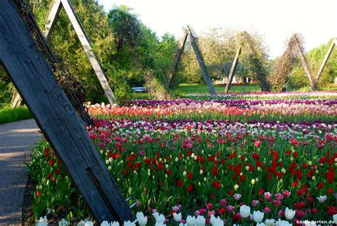 britzer garten tulipan britzer garten archive berlingarten
