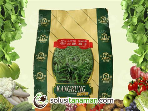 Harga Bibit Tanaman Kangkung kangkung daun lebar 500gr bibit tanaman sayur