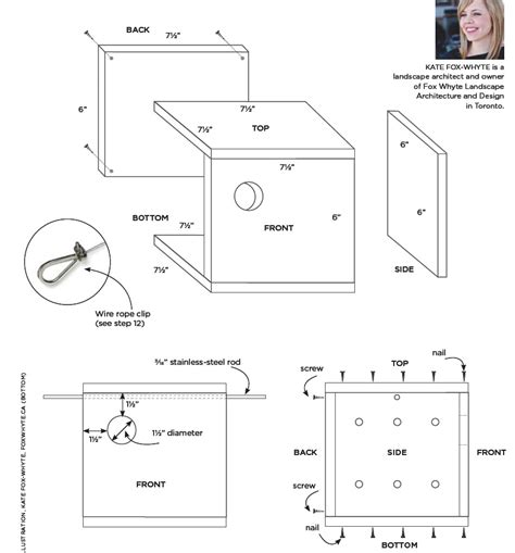 bird house hole sizes and dimensions house design and