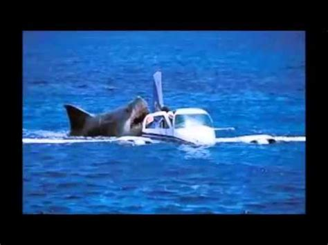 baby shark german megalodon shark attack caught on tape attacking crashed