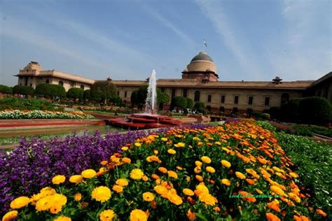 Delhi Garden by Mughal Garden Delhi Timings 2015 And Entry Charges India