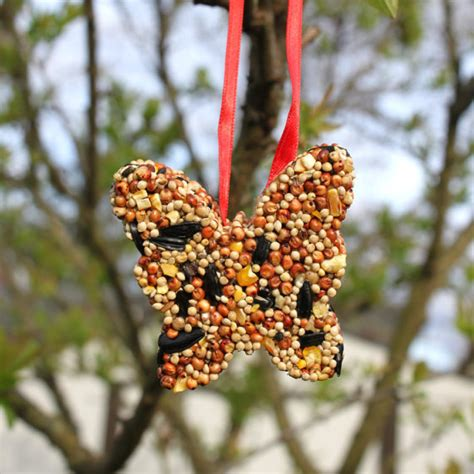 bird seed ornaments craft kit for kids with supplies