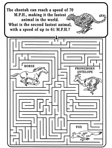 printable cheetah maze nature maze printable homeschooling pinterest maze