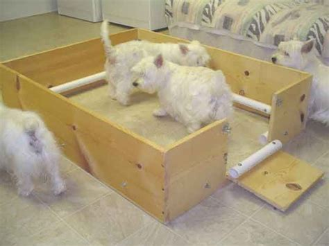 how to make a whelping box for a yorkie 25 best ideas about whelping box on doggie play pen and lab