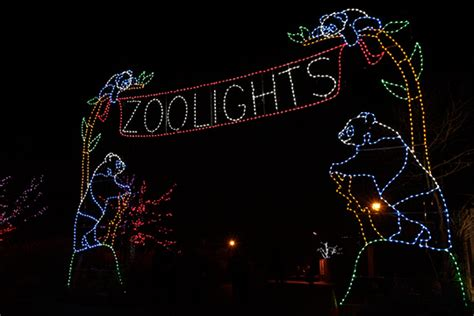 Dc Insider Toursour Top Picks Holiday Lights In Washington Dc Zoo Lights