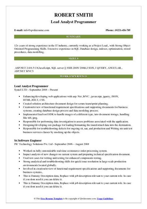 analyst programmer resume webdesignlondon co