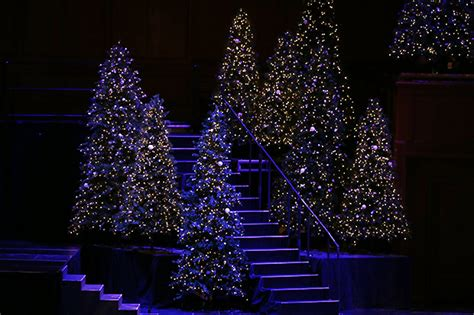 devotion around a christmas tree devotional fear not because of the savior elder clayton says church news and events