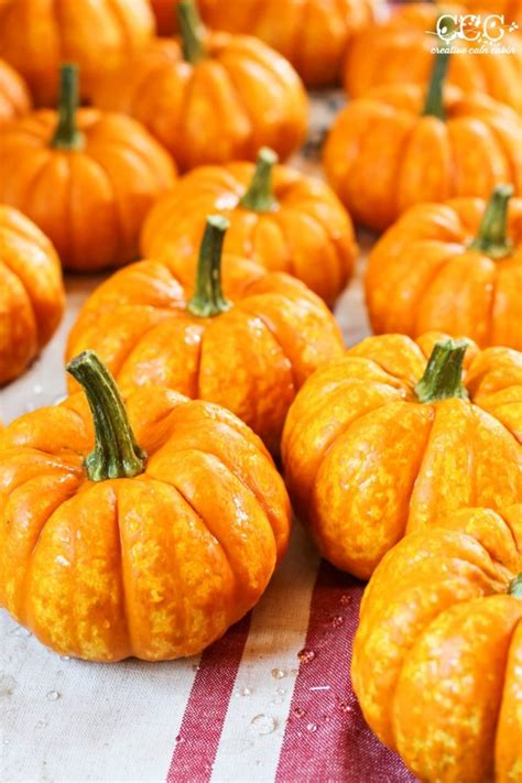 preserving pumpkins must craft tips preserving pumpkins